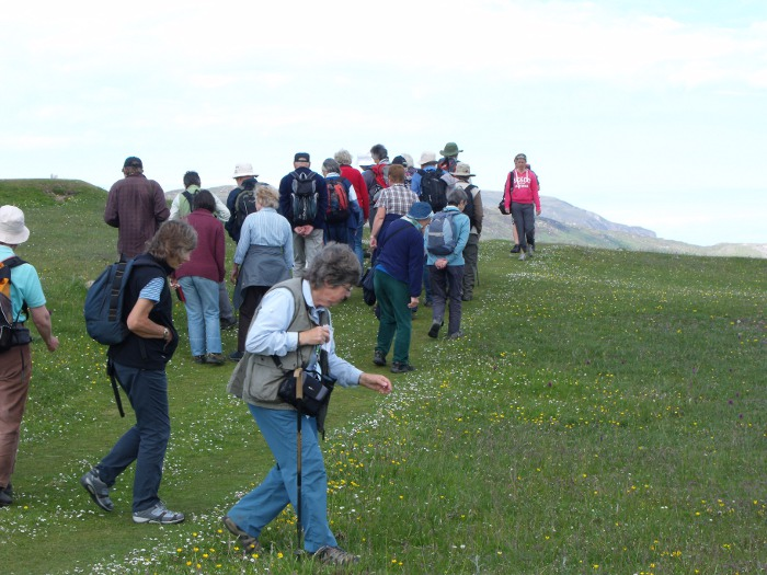 Group of people of various ages setting out on an expedition over grassy hills
