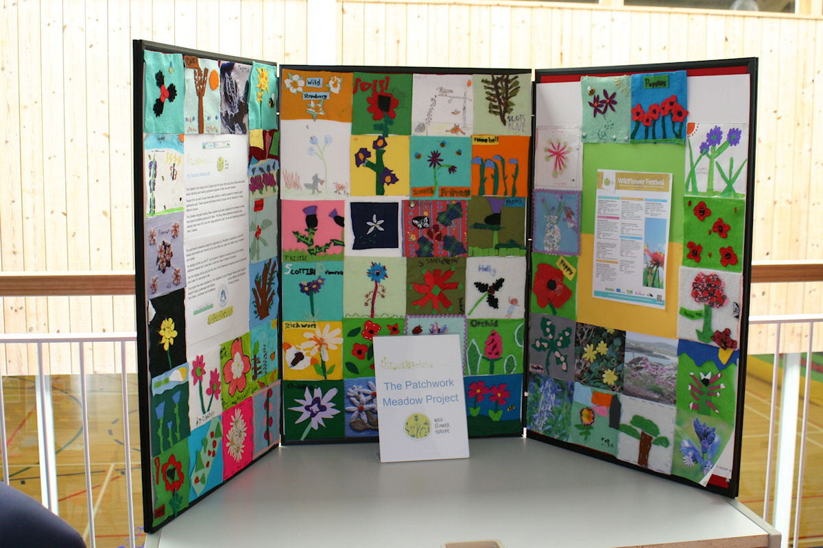 Triptych of patchwork squares celebrating wild flower week