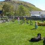 Children as well as dogs on the agility course