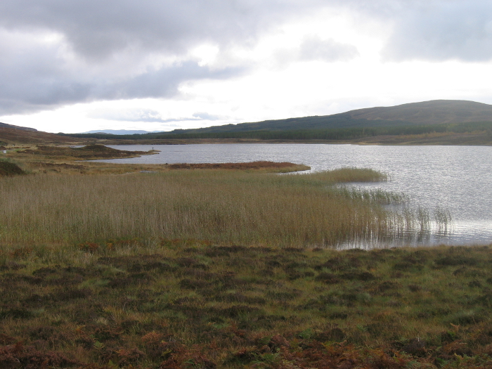 Looking eastwards down Loch Borralan to the sister chambered cairn