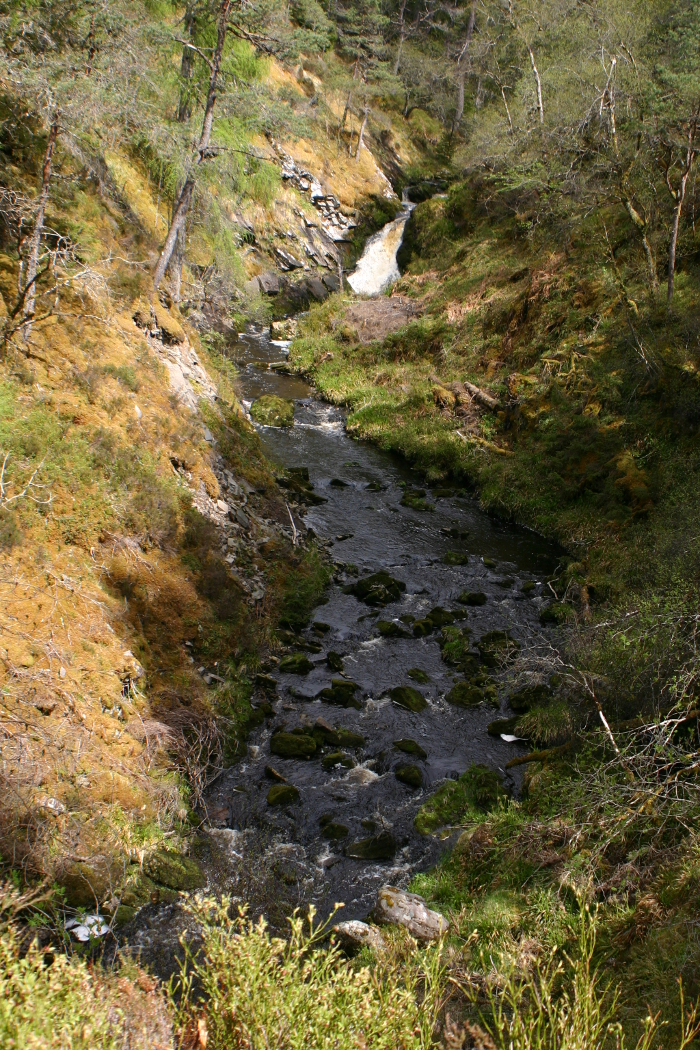 The alt rushing through its gorge
