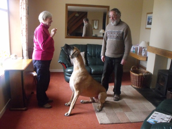 The residents of Stac Fada - Howard, Julie and Cleo