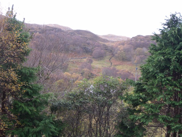 The seasonal colours in the strath - seen from our upstairs window