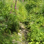 The spring, now dry because of the weather, which used to serve the population for fresh water
