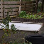 The vegetable patch dug ready for winter