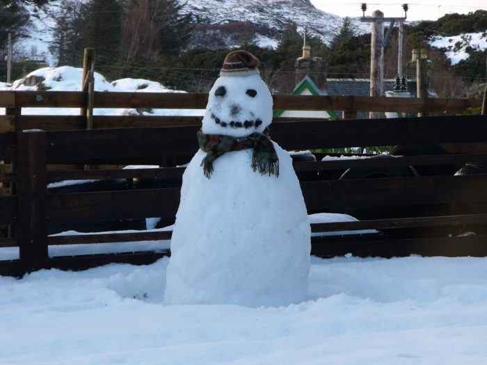 We haven't had snow enough for a snowman for quite a while - this handsome chap was built in 2010